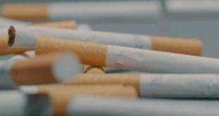 Suspected Stolen Cigarettes Seized in Sittingbourne