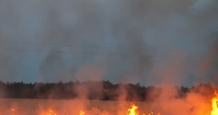 Field Fire Extinguished In Wormshill