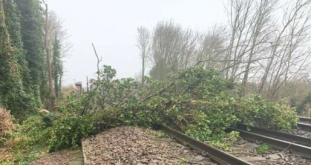Storm Ciara Causes Problems Locally